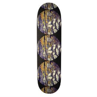 樹皮の陰陽のスケートボード スケートボード