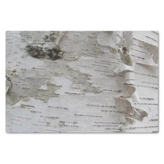 樺の木の吠え声によって皮をむかれる古い写真の芸術 薄葉紙