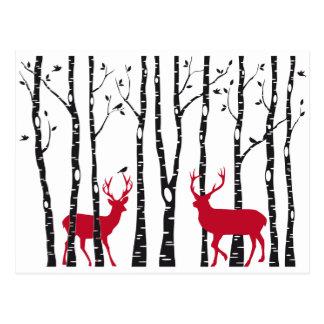 樺の木の森林のアカシカ ポストカード