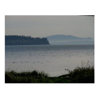 樺の木湾からのシャチの島 ポストカード