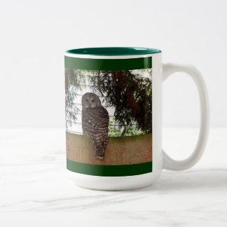 樺の木湾のフクロウ ツートーンマグカップ