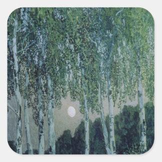 樺の木 スクエアシール