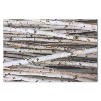 樺の木 薄葉紙