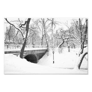 橋および雪セントラル・パーク フォトプリント