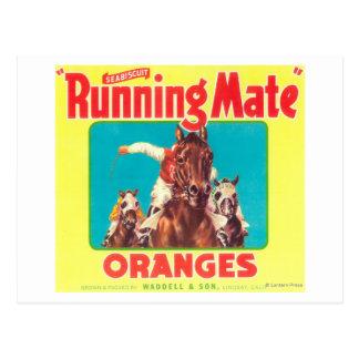 次席者候補オレンジLabelLindsay、カリフォルニア ポストカード