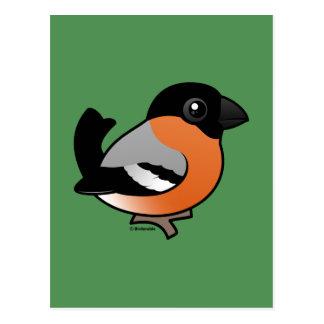 欧亜のBullfinch ポストカード