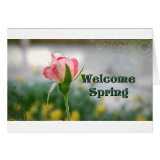 歓迎された春2 h-の店 カード