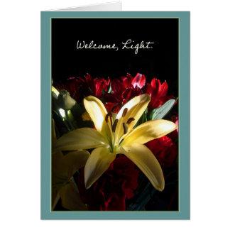 歓迎、ライト/Bienvenidaのluz カード