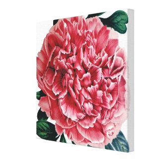 正方形のピンクのシャクヤクの大きいイメージのキャンバス キャンバスプリント