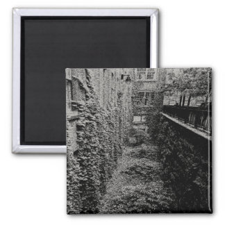 正方形の磁石-煉瓦及びキヅタ場面-色 マグネット