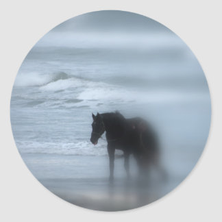 歩いている馬ビーチニューポートロードアイランド ラウンドシール