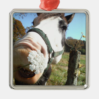 歯の野生の花を持つおもしろいなブラウンの&Whiteの馬 メタルオーナメント