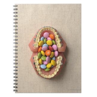 歯科モデルで役立つチョコレート ノートブック