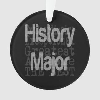 歴史の専攻のな非凡 オーナメント