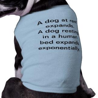 残りの犬 ペット服