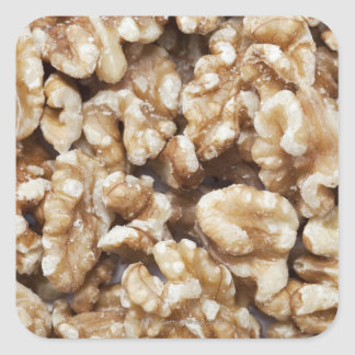 殻から取り出されたクルミ スクエアシール