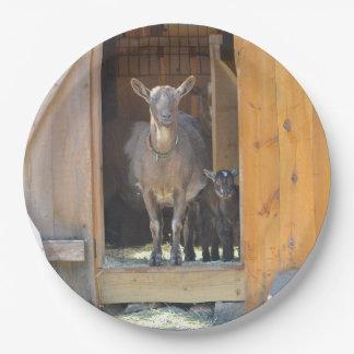 母およびベビーのヤギのプレート ペーパープレート