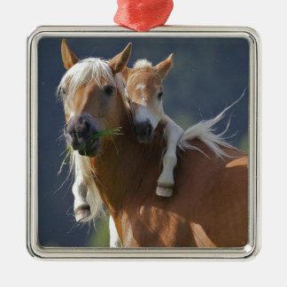 母およびベビーの馬 メタルオーナメント