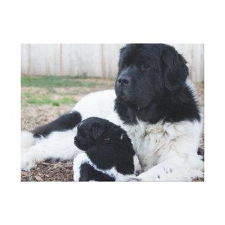 母および子供のニューファウンドランド犬(v. 2) キャンバスプリント