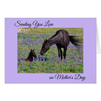 母の日のロバ及び子馬のBluebellの牧草地の写真 カード
