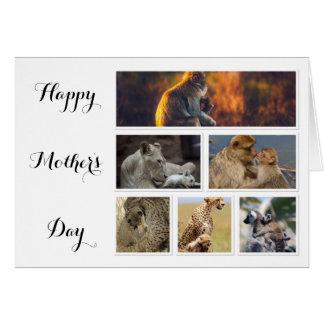 母の日カード-動物の写真のコラージュ カード