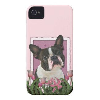 母の日-ピンクのチューリップ-ボストンテリア Case-Mate iPhone 4 ケース