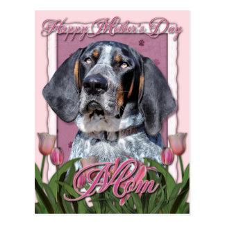 母の日-ピンクのチューリップ- BluetickのCoonhound ポストカード