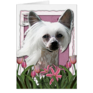 母の日-ピンクのチューリップ- Crestie - Kahlo カード