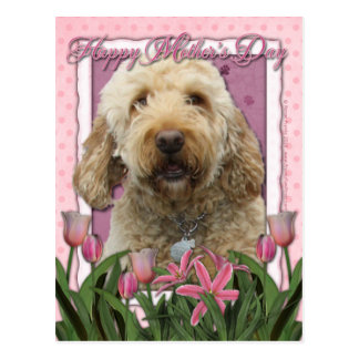 母の日-ピンクのチューリップ- Goldendoodle ポストカード