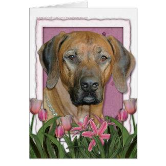 母の日-ピンクのチューリップ- Rhodesian Ridgeback カード