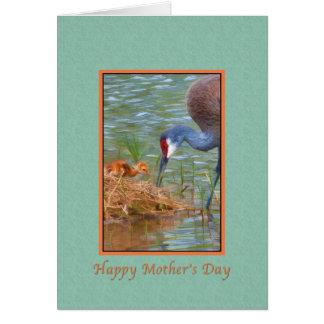 母の日、Sandhillクレーンベビーおよび母 カード