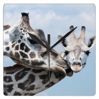 母キリンは彼女の子牛に接吻します スクエア壁時計