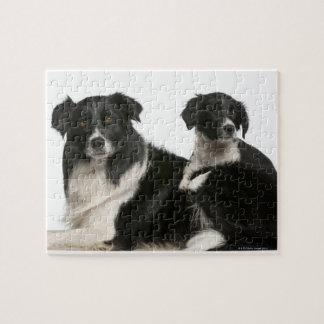 母ボーダーコリーおよび子犬 ジグソーパズル