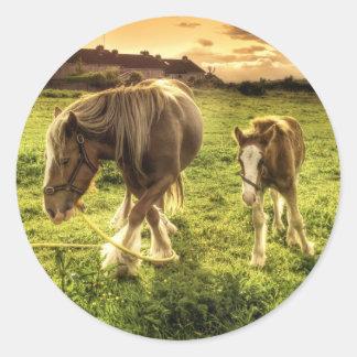 母及び子馬の馬 ラウンドシール