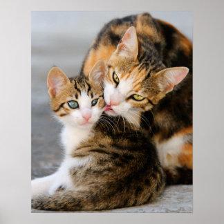 母猫はかわいい子ネコを愛します ポスター