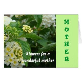 母、クリーム色のhydrangas カード