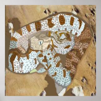 毒蛇(Macroviperaのlebetinaのobtusa) ポスター