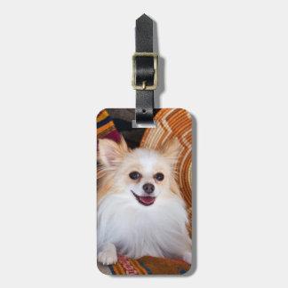毛布にあるポメラニア犬 ラゲッジタグ