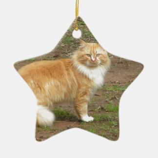 毛皮で覆われたオレンジおよび白い猫 セラミックオーナメント