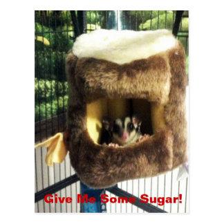 毛皮で覆われた木のトラックのぶら下がったなベッドの砂糖のグライダー ポストカード