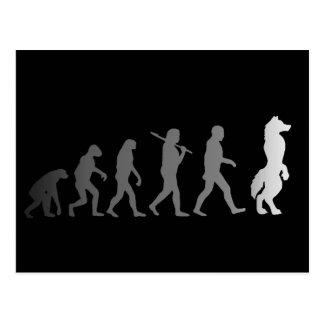 毛皮で覆われた進化 ポストカード