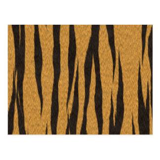 毛皮のコレクション- ポストカード