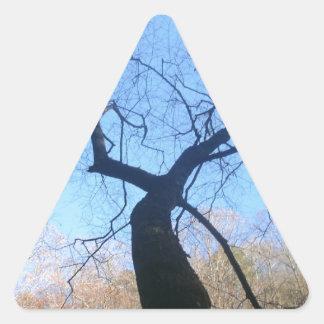 気味悪い木 三角形シール