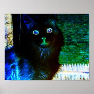 気味悪い猫ポスター ポスター