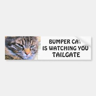 気難しい天使の豊富な猫はテールゲート31を見ています バンパーステッカー