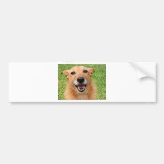 気難しい猫の死亡幸せな犬プロダクト バンパーステッカー