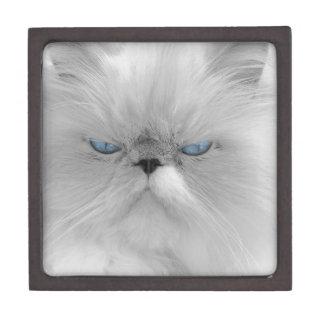 気難しい猫の邪悪な祖父 ギフトボックス