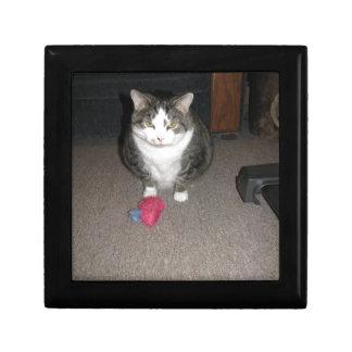 気難しい脂肪質猫は楽しみません ギフトボックス