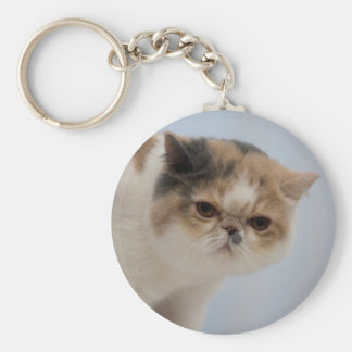 気難しい顔猫 キーホルダー