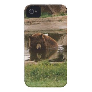 水くま Case-Mate iPhone 4 ケース
